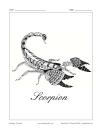 Zodiaque: Scorpion