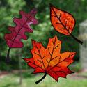 Vitraux d'automne