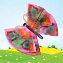 Aimants en forme de papillon