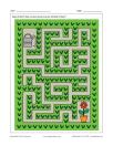 Labyrinthe Fleur et arrosoir