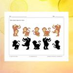 Les singes et leurs ombres