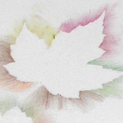 Silhouettes de feuilles