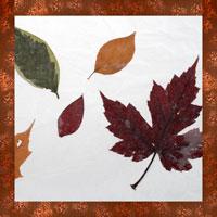 Tableau de feuilles