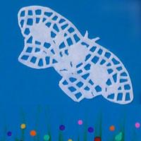 Carte avec un papillon